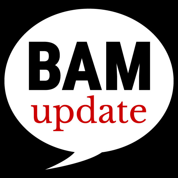 BAM update icon