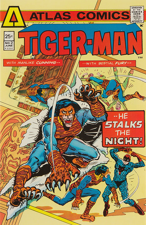 Tigerman #2 cover